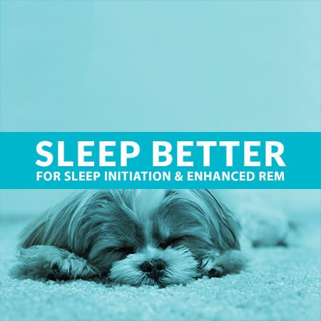 Shop Sleep Health